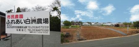 p-farm.jpg